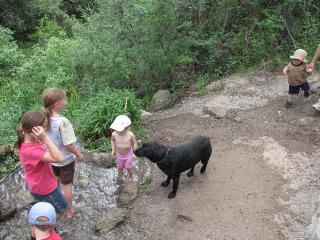 Sadie at Cress Creek