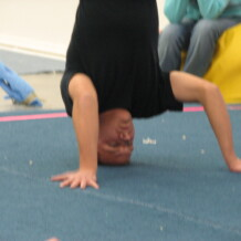 7th semiannual headstand contest