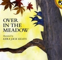 book bonanza: over in the meadow